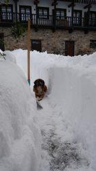 Apartamentos Fuente de Somave en la nieve